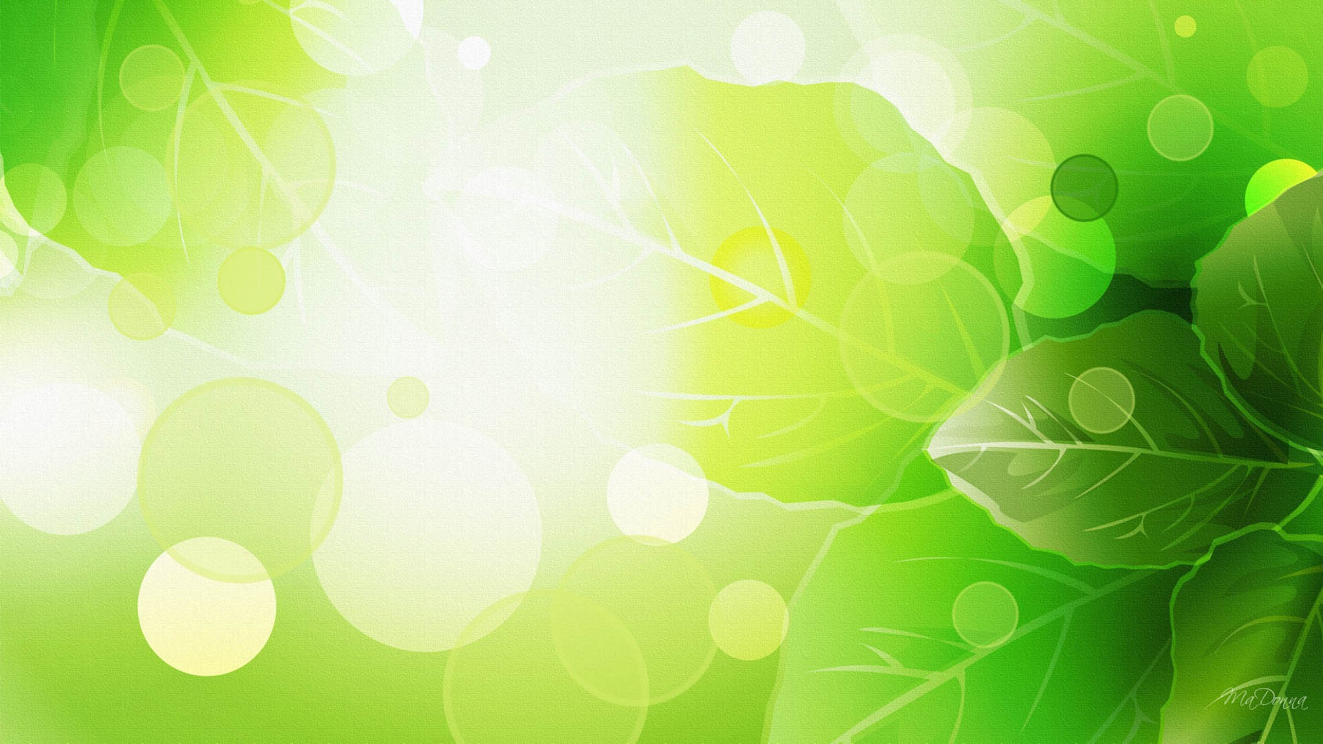 Image gallery spring green for Cheap green wallpaper